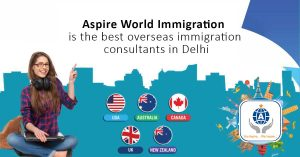 What to know about your immigration consultant?