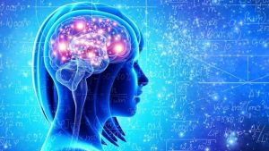 Information about what keeps the brain active